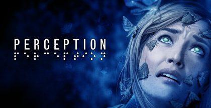 Perception v18.11.17